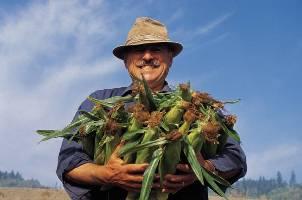 Produttori agricoli