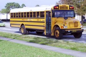 Trasporto scolastico (scuolabus)